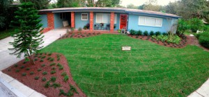 Framing beds and new sod make this yard pop!