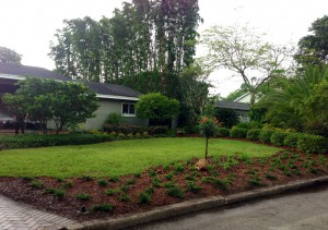 Cut down on mowing and create some separation from the street with some landscaping against the curb.