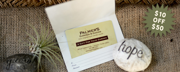 palmers-day8-banner-website